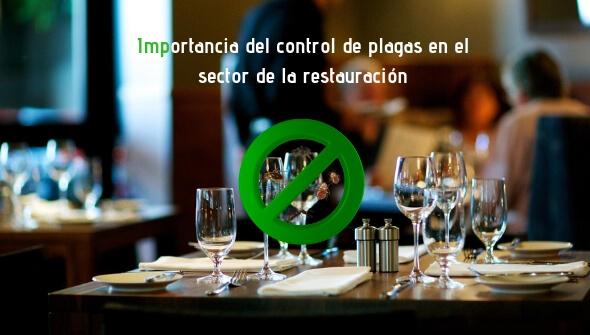 Conoce la importancia del control de plagas en restaurantes, bares, hoteles....