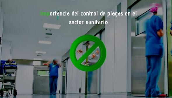 Control de plagas en el sector sanitario