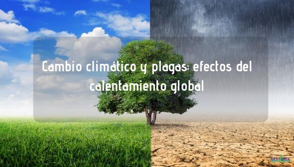 Control de plagas y efecto en el cambio climático
