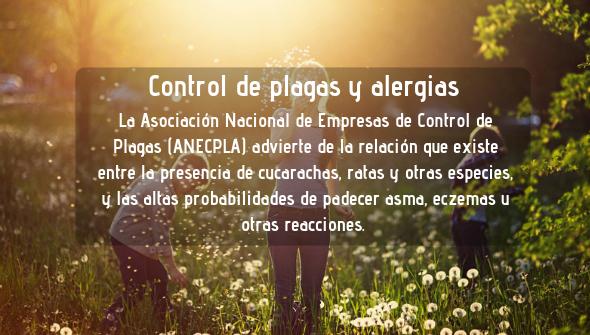 Importancia de control de plagas en alergias