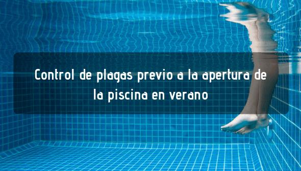 Control de plagas en piscinas